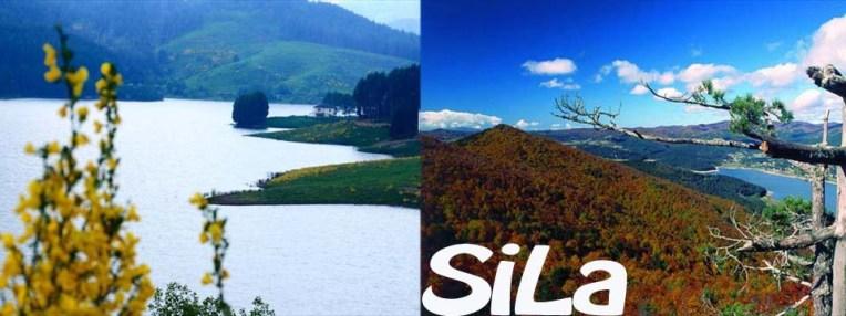 FOTO SILA